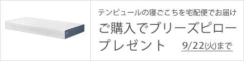 イーズ 新発売 ネット限定マットレス